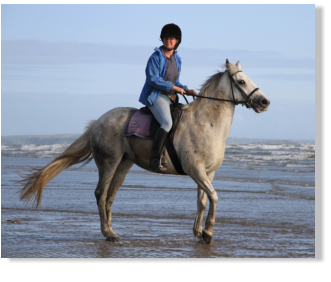Beach Horse Riding With Pembrey Park Centre In PembreyPembrey Based